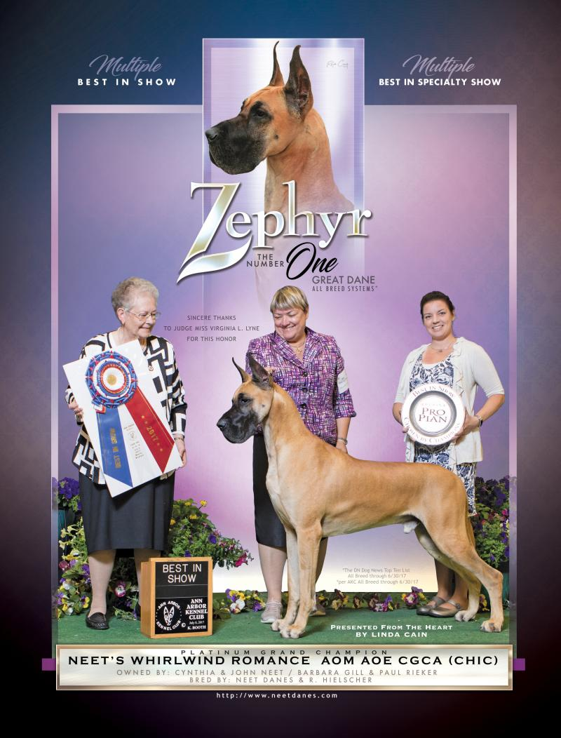 Multiple Best in Show Zephyr